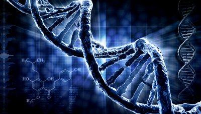Mais um vídeo sobre o DNA