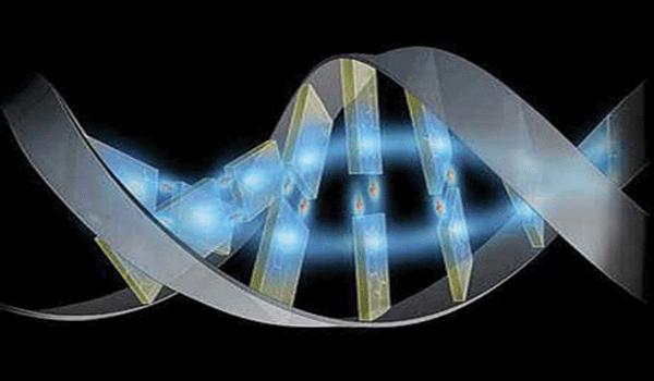 Aula Preparatória de genética para o enem