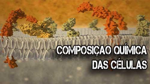 ccomposição química da celula