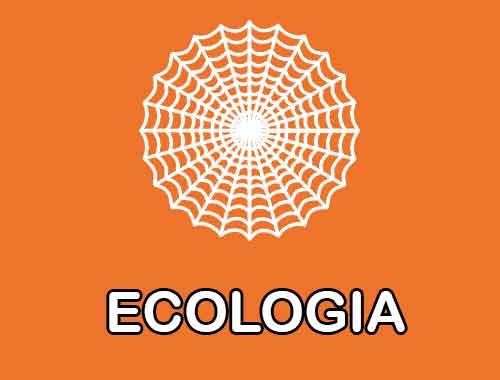 Foto de Questionário Simulado Ecologia questões