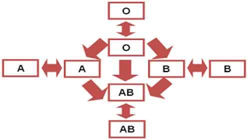 Foto de Tipos sanguíneos – Sistema ABO