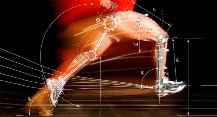 Entenda conceitos como biomecânica do movimento