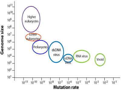 taxa de mutação