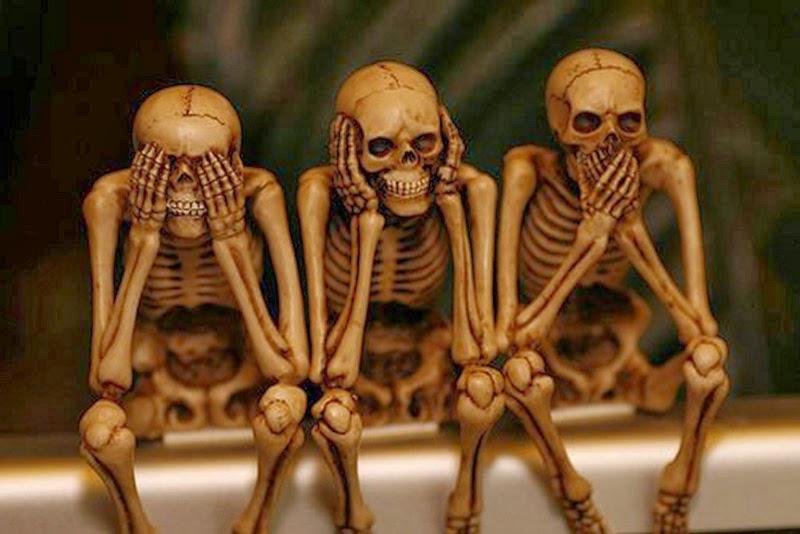 fatos sobre nosso esqueleto