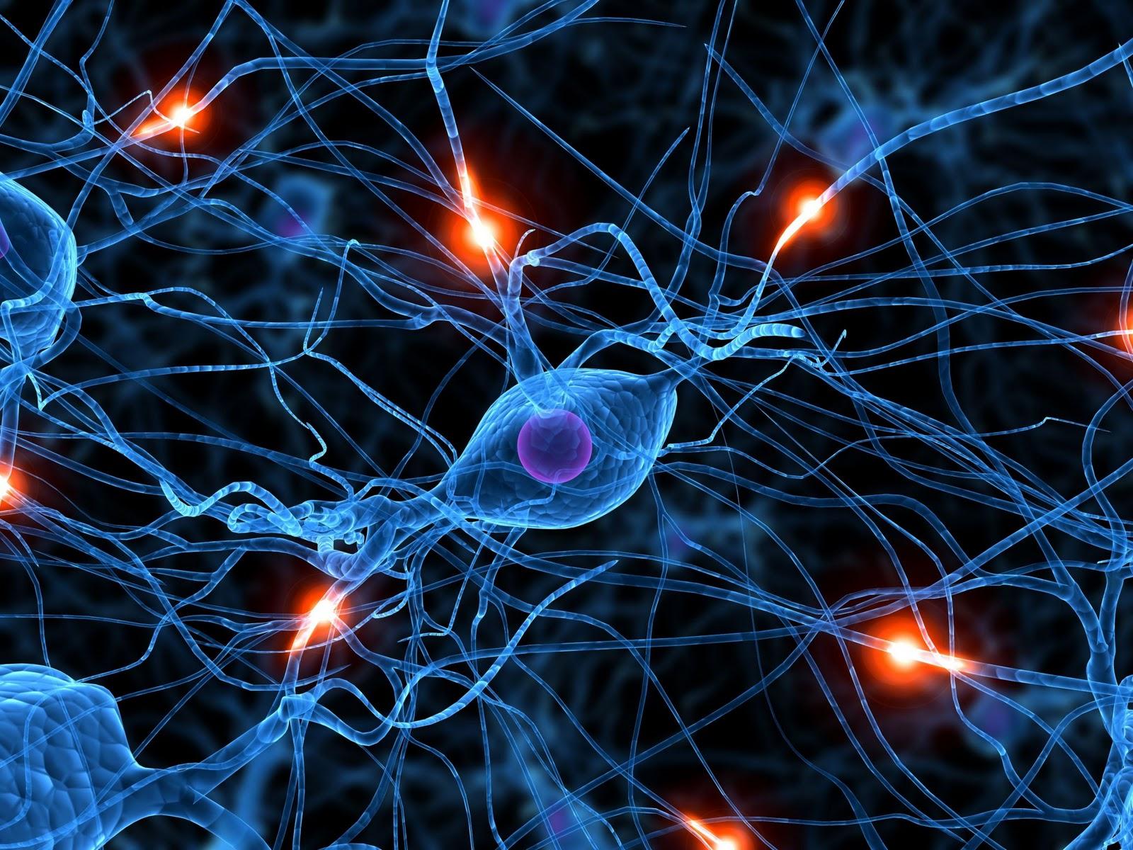 Melhores sua capacidade com sites que aumentam sua inteligência