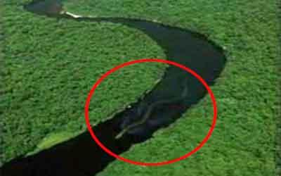 Photo of A lenda da cobra grande da Amazônia