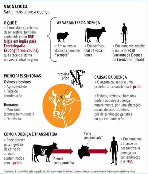 Prion e a doença da Vaca Louca