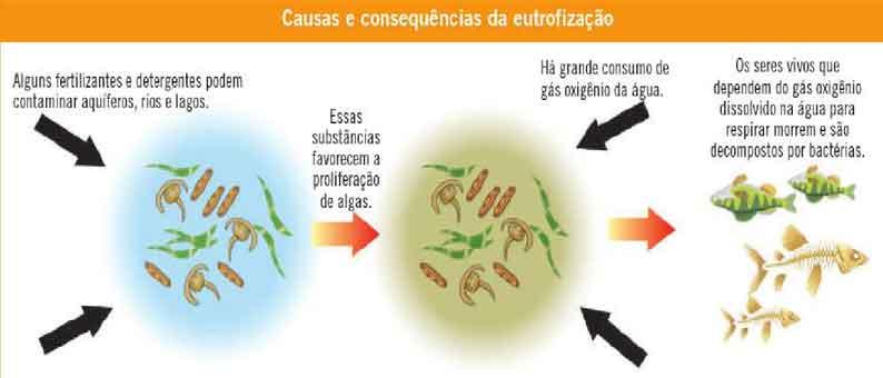 Fontes e tipos de poluição da água - resumo