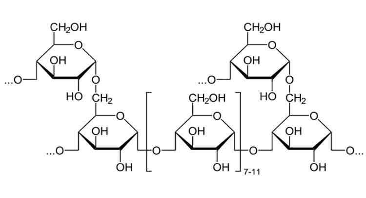 Entenda o metabolismo do glicogênio, tipos, o glicogênio muscular e muito mais